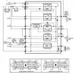 CCRM to Cooling Fan and Fuel Pump Wiring Diagram