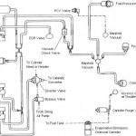 Fox Body vacuum diagram